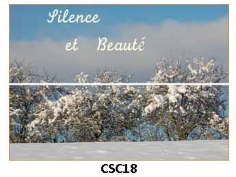 CSC18