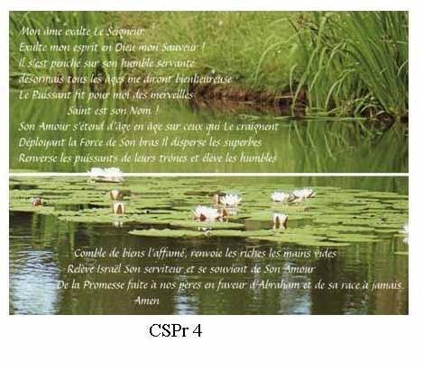 CSPr4