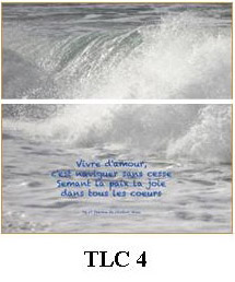 TLC4 - Image carrée 148 x 148 mm 2,50 €