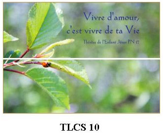 TLCS10 - carte simple 105 x 148 mm - 1 €