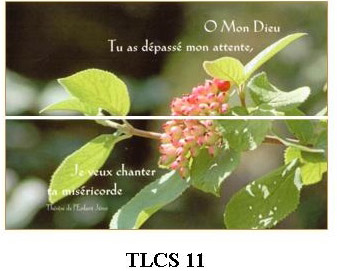 TLCS11 - carte simple 105 x 148 mm - 1 €